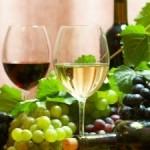 portal o winie przydatne informacje
